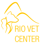 Rio Vet Center
